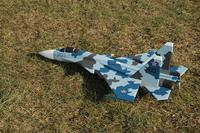 Name: flanker1.jpg