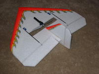 Name: FireFly 017.jpg