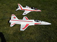 Name: F-5e & T-45-1.jpg