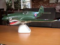 Name: P-40-painted3.jpg