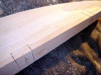 Name: DSC02557.jpg