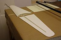 Name: IMG_1109.JPG Views: 23 Size: 69.8 KB Description: Just 3 pieces of foam per wing.