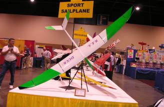Troy Lawicki's RES Duck took first in sport sailplane. Wingspan is 118