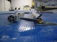 Name: ForkTail booms 004.jpg