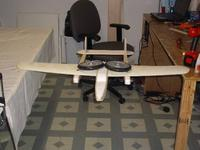 Name: Fork tail body 003.jpg