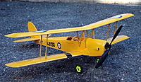 Name: moth.jpg