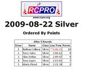 Name: Silver points 8-22-09.JPG