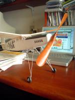 Name: helice_moth.jpg