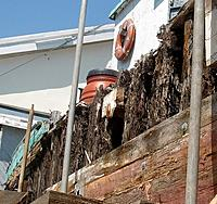 Name: rough spot on the starboard side dryrot.JPG