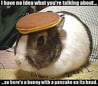 Name: bunny rabbit pancake.jpg
