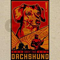 Name: Obey the Dachshund.jpg