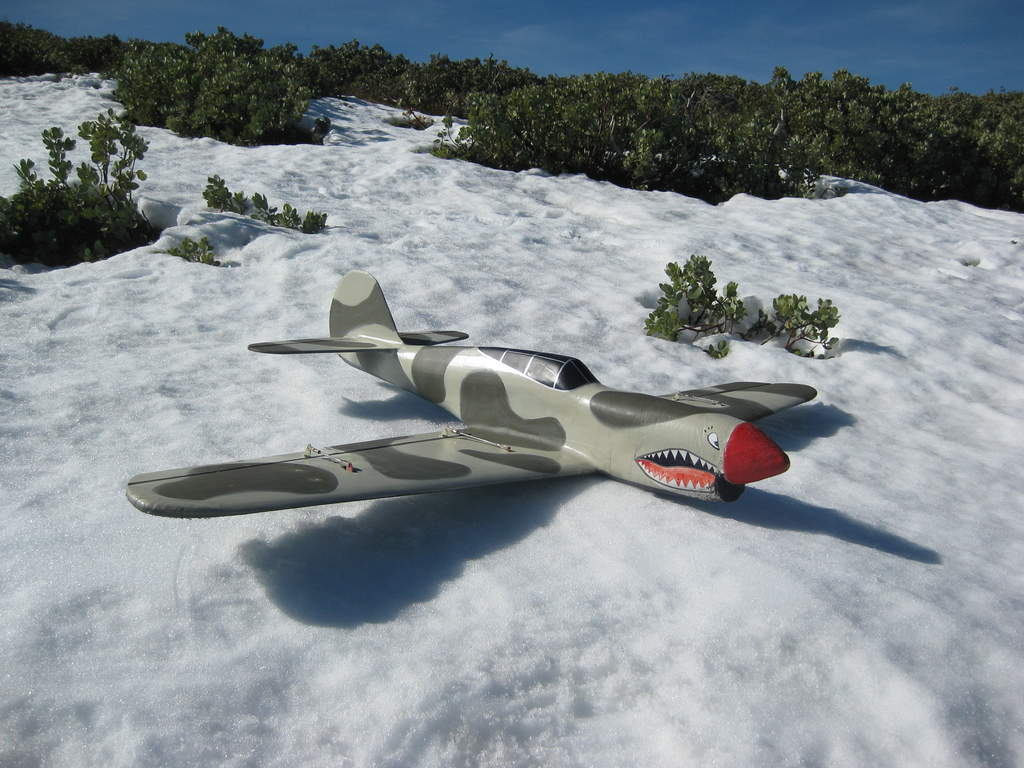 P40 Flying Snow Tiger.......?
