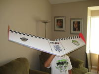 Name: Cams Wing 021.jpg