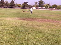 Name: P8240014.jpg