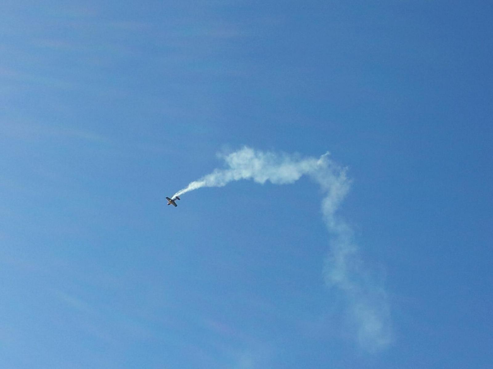 Name: eagle580smoking.jpg