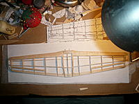 Name: P1030404.jpg