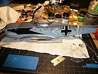 Name: P1030456.jpg