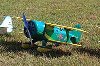Name: IMG_8902 (Large).jpg