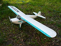 Name: P1000223.jpg