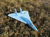 Name: DSCF2205.jpg