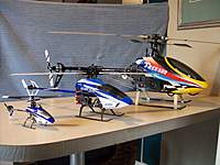 Name: 2010 pics 127.jpg
