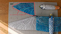 Name: S1010002 This is Cutted Wing.jpg