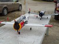 Name: 05-11-2008 047.jpg