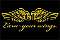 Name: GT_Wing_Logo5.png