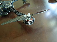 Name: DSCN0140.jpg