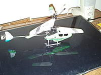 Name: Green Freebird 012.jpg