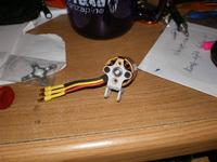 Name: IMGP0188 (Large).jpg