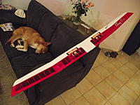 Name: DSCF1630.jpg