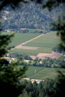 Name: napa01.jpg