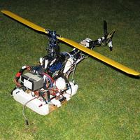 Name: trex_rebuild01.jpg