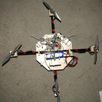 Name: quad_balance01.jpg