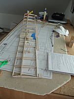 Name: DSC00954.jpg