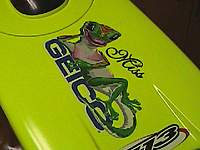 Name: geico 3.jpg
