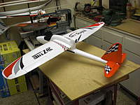 Name: Wild Hawk with Sky Surfer Wings1.jpg
