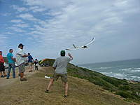 Name: DSCF9528.jpg