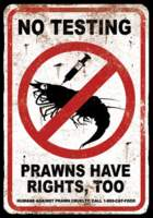 Name: prawn.jpg