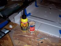 Name: 100_1529.jpg