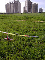 Name: IMG-20130222-00323.jpg