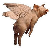 Name: Flying Pig.jpg