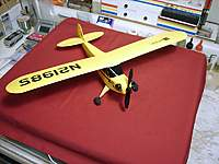 Name: 01290059.jpg