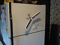 Name: Ember 1, 07-16-2008  #6.jpg