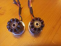 Name: Two fried 2100kv.jpg
