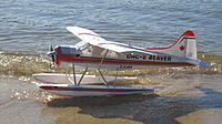 Name: Beaver Floats 032.jpg