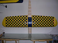 Name: S 110 Wing bottom Checkerboarded.jpg