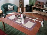 Name: Lynxman.jpg