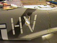 Name: DSC04695.jpg